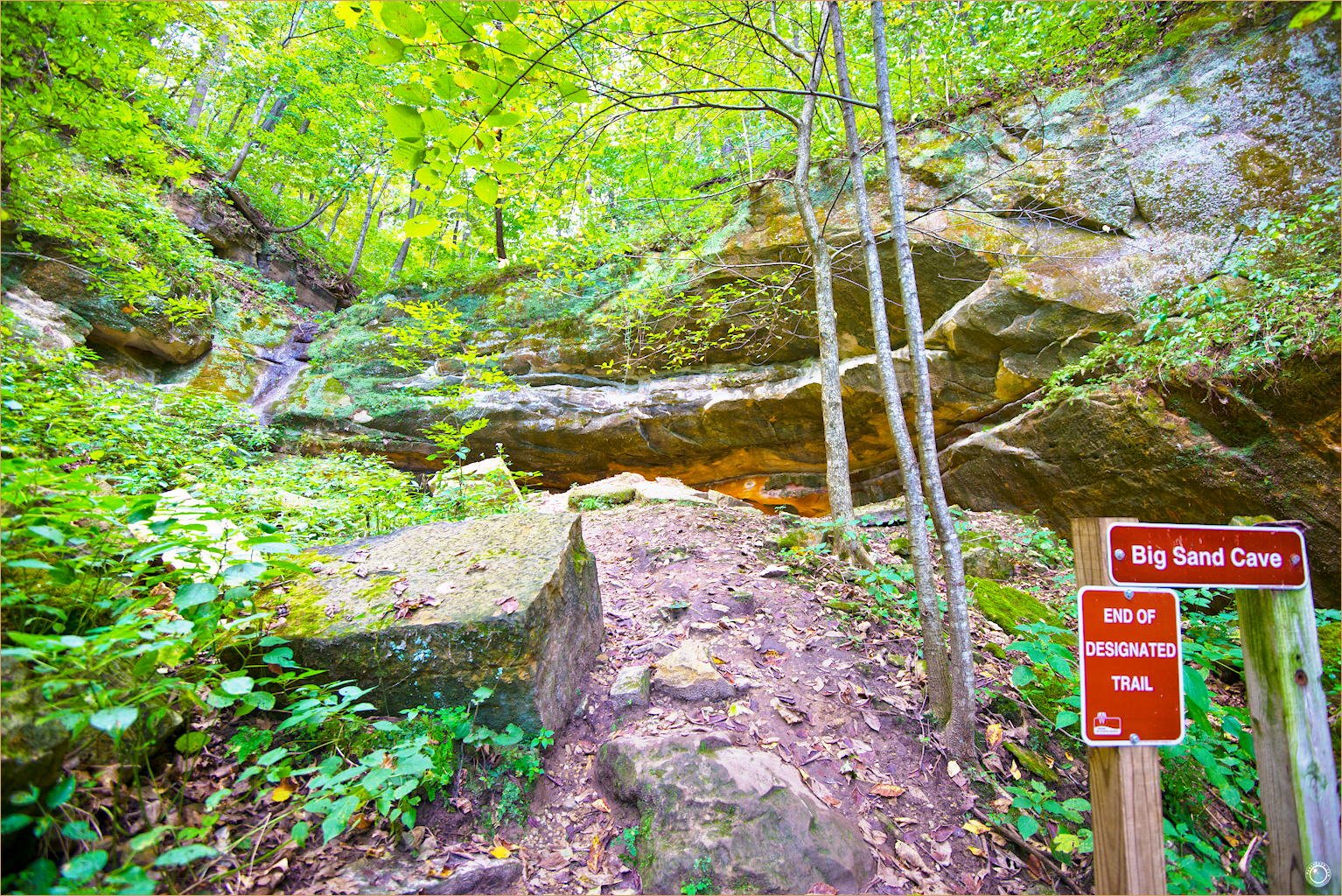 116 Wyalusing State Park Wisconsin Sand Cave Trail