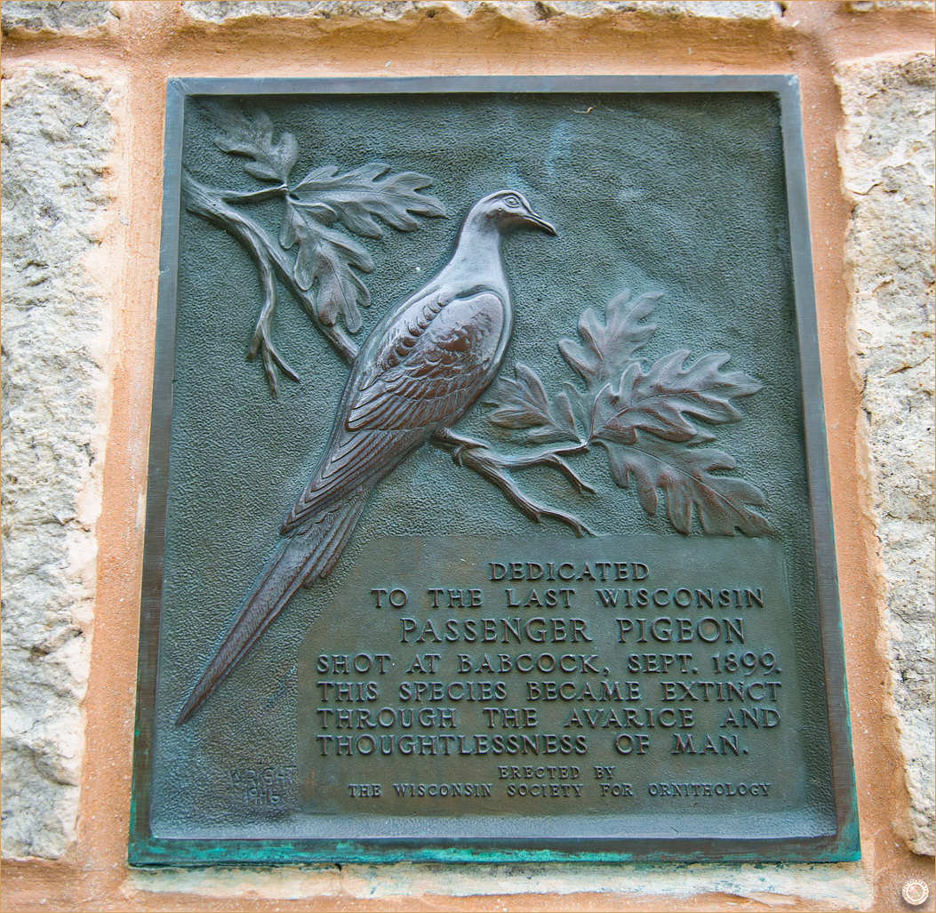 167 Wyalusing State Park Passenger Pigeon Monument