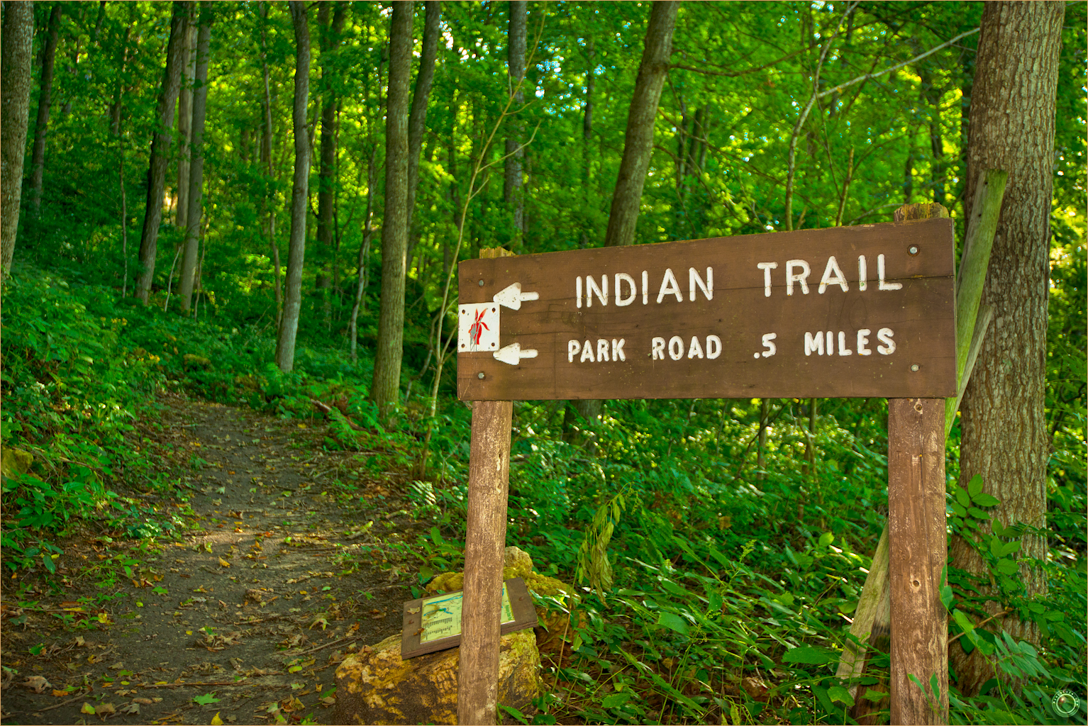 26 Wyalusing State Park Wisconsin Indian Trail Sign