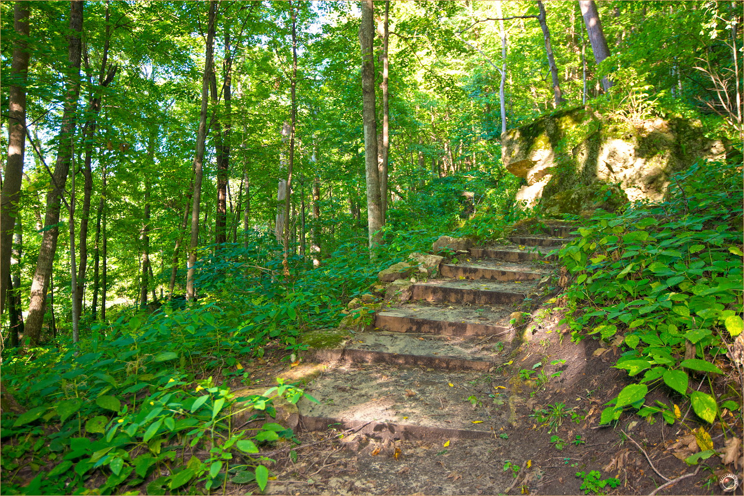 28 Wyalusing State Park Wisconsin Stairway to Heaven