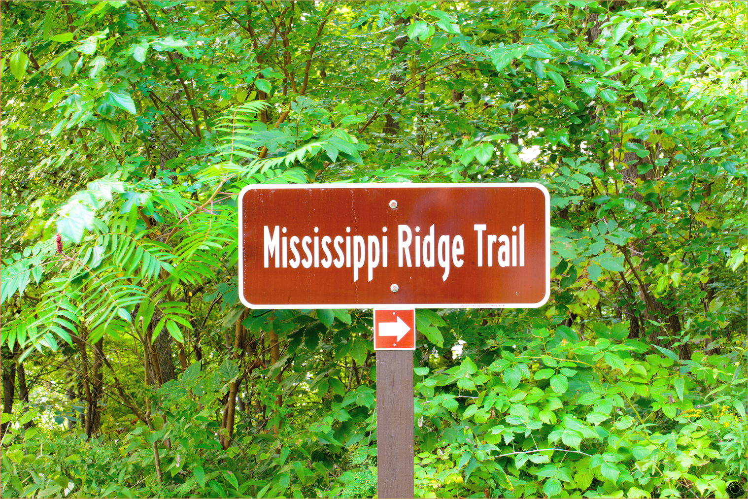 80 Wyalusing State Park Mississippi Ridge Trail Sign