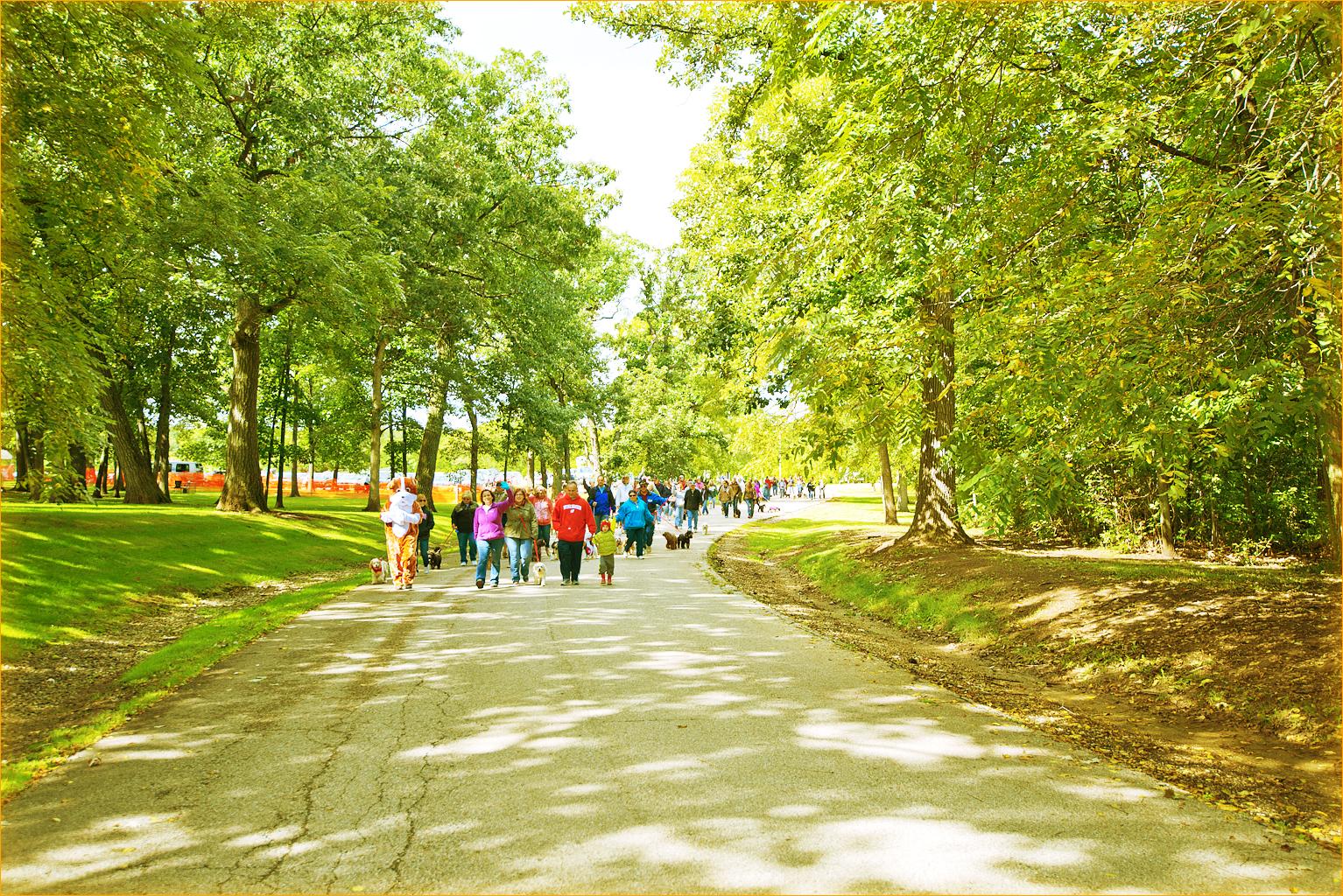 Wigglebutt Walk 2014 100