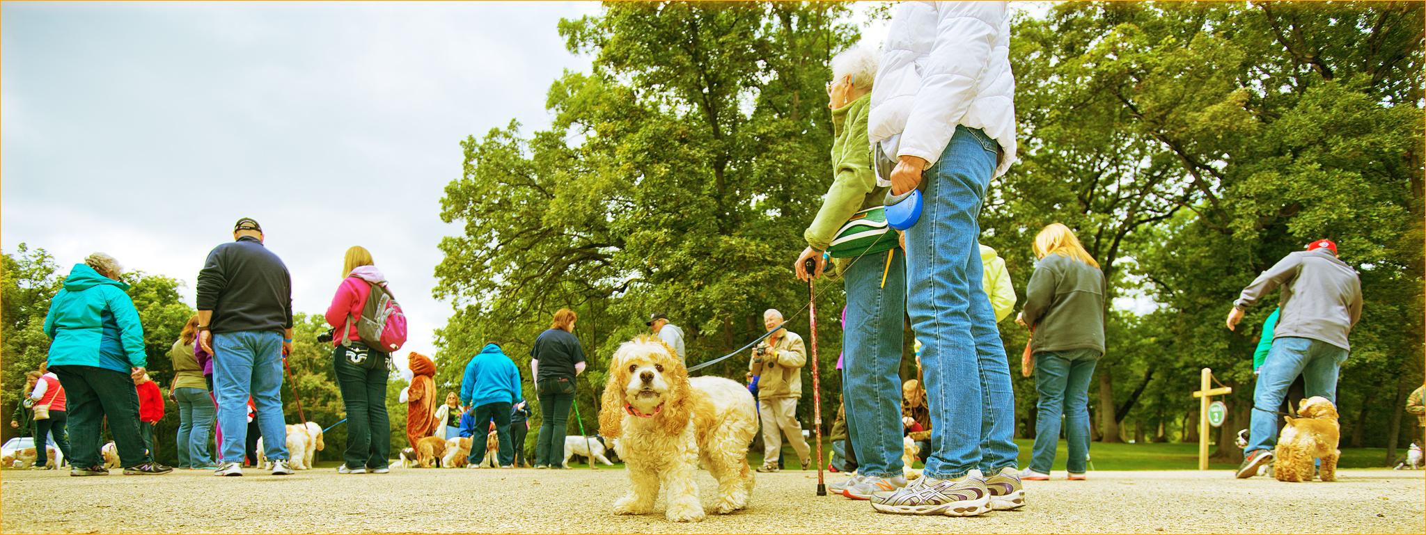 Wigglebutt Walk 2014 132